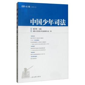 全新正版  中国少年司法