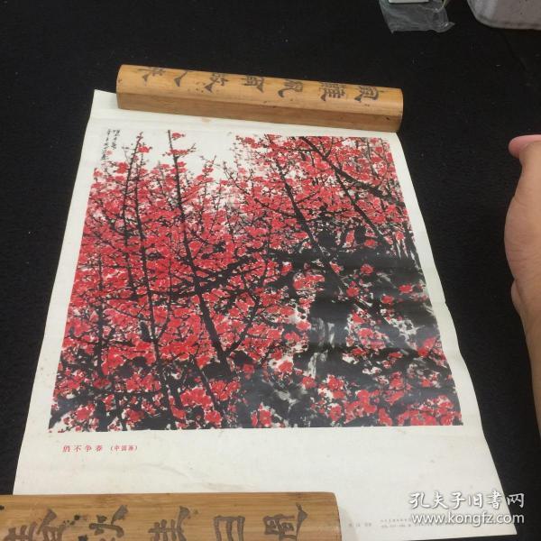 俏不爭春(中國畫)