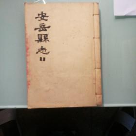四川安岳县志11