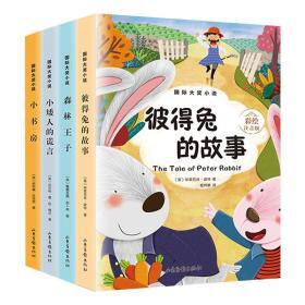 国际大奖小说 彩绘注音版(全4册)