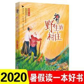 2020暑假读一本好书5-6年级 野生的村庄--少年中国 慕榕著 小学生五六年级推荐阅读课外书儿童文学书籍 福建少年儿童出版社