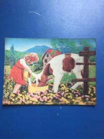 塑料彩色外國立體感圖片(小女孩與小牛)