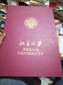 北京大學博雅塔未名湖圖書館紀念掛件竹雕,