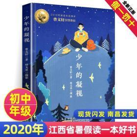 2020年江西省暑假读一本好书 少年的凝视 曹文轩著 初中生假期读好书暑期读一本好书 安徽少年儿童出版社
