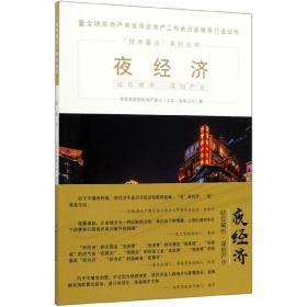 夜经济/技术要点系列丛书
