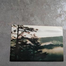 眀信片;神农架风光[1张]