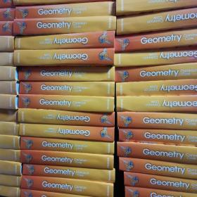 Geometry Common Core 正版  九五新