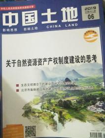 中國土地2019年6期