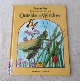 Outside My Window (Early Literacy Library)