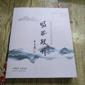 旸谷跃升——都安县人民法院资料汇编