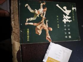 少林二十四腿、三十六手【中国拳术与气功丛书】