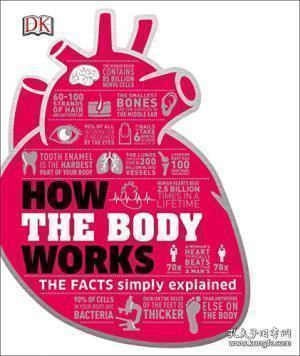 How The Body Works-身体如何运作