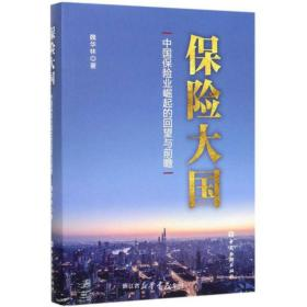 保险大国:中国保险业崛起的回望与前瞻