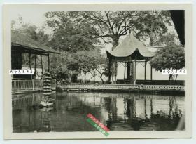 民国浙江杭州楼台庭院园林建筑老照片,8.7X6.3厘米,泛银