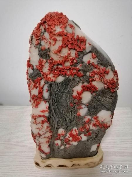 靈璧石:朵朵紅梅春映雪