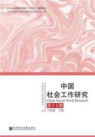 正版現貨 中國社會工作研究 第十七輯 中國社會工作教育協會  王思斌 社會科學文獻出版社 9787520143684