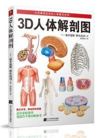 3D人体解剖图