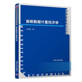 面板数据计量经济学/数量经济学系列丛书