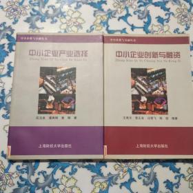 中小企业与金融丛书:中小企业产业选择、中小企业创新与融资  二册