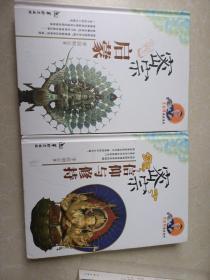 李居明密宗系列:密宗信仰与修持+密宗启蒙(2本合售)精装