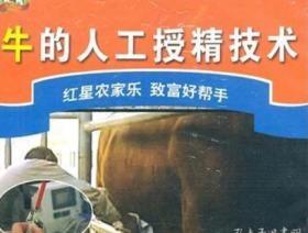 牛人工授精技术 牛人工授精步骤和方法  视频教程