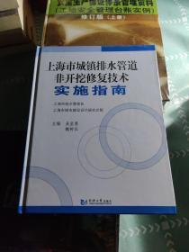 上海市城镇排水管道非开挖修复技术实施指南