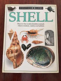 DK英文版 发现者丛书 Shells: Photographic Recognition Guide 贝壳类生物百科 ktg6下柜1