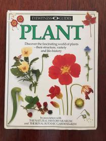 DK 目击者丛书 英文版 花卉植物x38