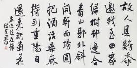 刘俊京书法  八平尺
