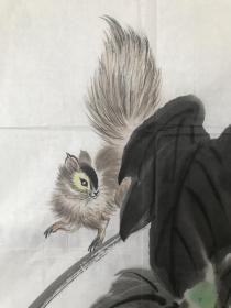 已故著名画家石谷风葡萄松鼠