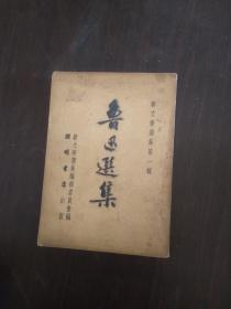 新文学选集第一辑 - 鲁迅选集 (下册)