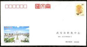 2007-0304(PF)-0038 菊花80分郵資封加印武安廣場、職教中心,空白封,無郵寄使用過,有水濕漬,如圖。