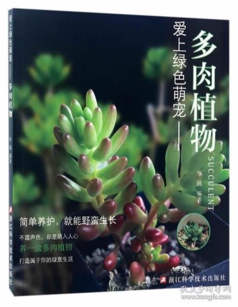 愛上綠色萌寵:多肉植物