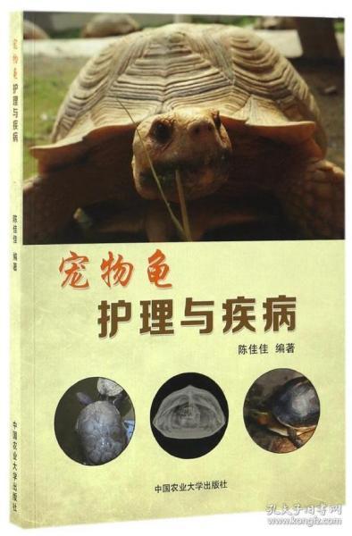 寵物龜護理與疾病