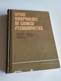 Spore morphology of Chinese pteridophytes 中国蕨类植物孢子形态 英文版精装