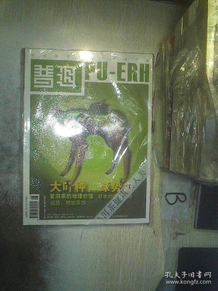 普洱 2008 6  .