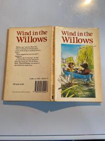 wind in the willows  柳树上的风