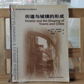 街道与城镇的形成:国外城市规划与设计理论译丛