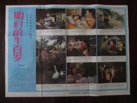 老电影海报:咱们的牛百岁(上海电影制片厂摄制,二开)