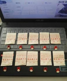 文革全品原包装徽章 (包装带毛主席语录,林题;徽章北京天安门红旗图案) 10枚合售!包老!