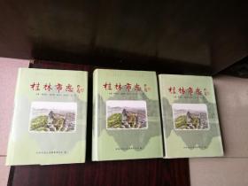 桂林市志(上中下精装)