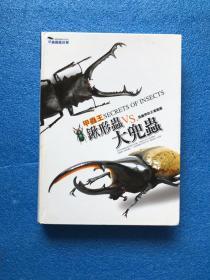 甲虫图鉴故事