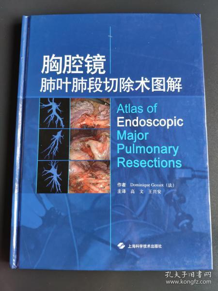 胸腔镜肺叶肺段切除术图解