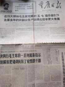 文革 重庆日报