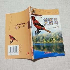 中国名鸟丛书:芙蓉鸟
