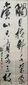 江苏常熟著名书画家,著名草书大家,钱持云先生,草书大字七言联,录李方膺《梅花》句:触目横斜千万朵,赏心只有两三枝。