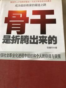 中国本土红色管理书系:骨干是折腾出来的