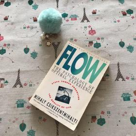 Flow:The Psychology of Optimal Experience