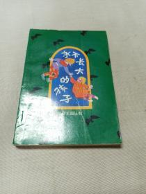 永不长大的孩子:童话王国丛书