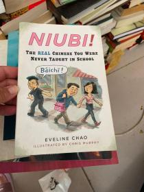 Niubi!:The Real Chinese You Were Never Taught in School